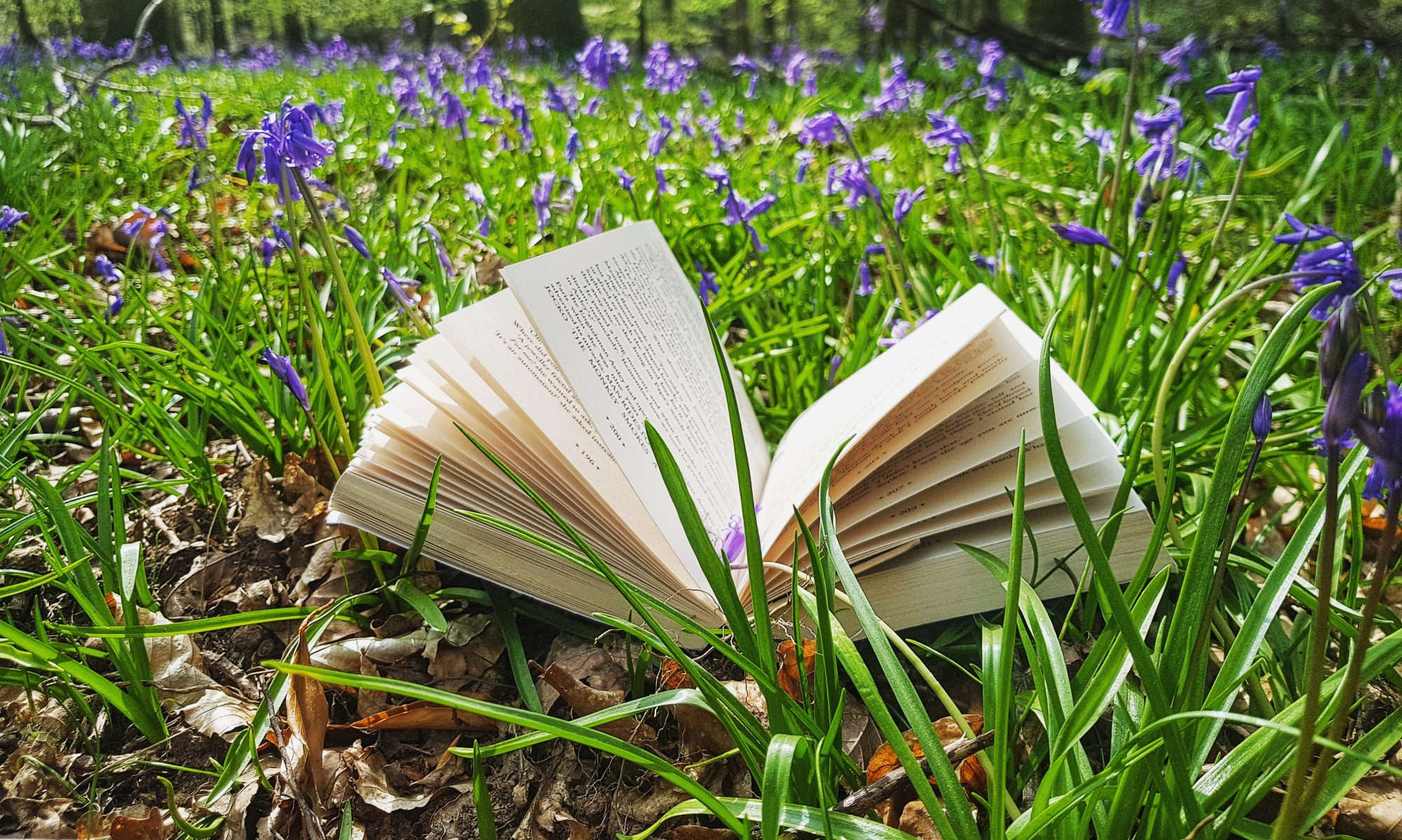 Books By The Woods